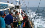 Skagen Havfiskeklub